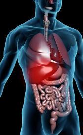 Tratamiento de la hepatitis
